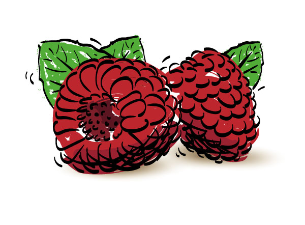 dalhousie raspberries